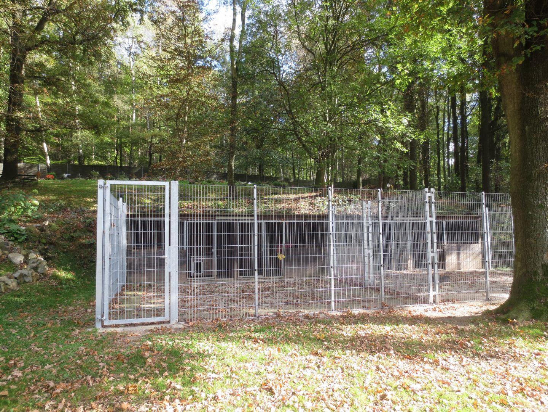 Hundezwinger Haus Garten Zaun Tor Gmbh